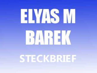 Teaserbild - Elyas M Barek Steckbrief